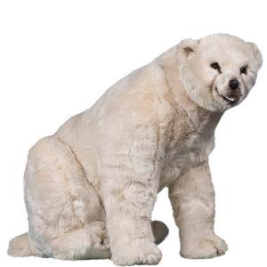 Naturtrogen isbjörn