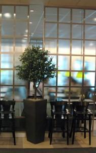 Konstgjort Olivträd, flamskyddsbehandlat.