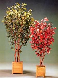 Konstgjorda kontorsväxter med höstfärger