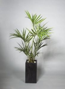 Konstgjord kentiapalm