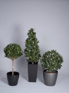 Konstgjorda Lagerträd