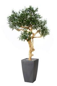 Konstgjort olivträd i hög kruka