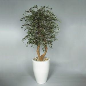 Konstgjort olivträd med äkta stammar