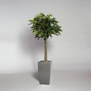 Konstgjord växt med äkta stammar