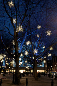 Stora, lätta ljusstjärnor som bland annat kan hängas i träd