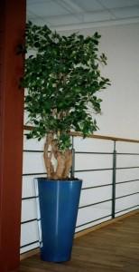 Handgjord sidenväxt i blå, hög kruka.