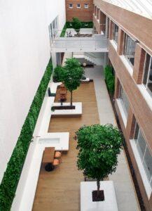 Naturtrogna ficusträd och kundanpassad växtvägg