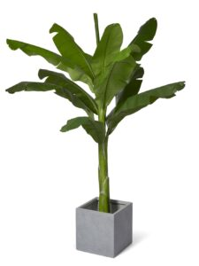 Bananträd naturtroget