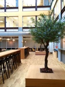 konstgjort olivträd på innergård hos Bonniers.