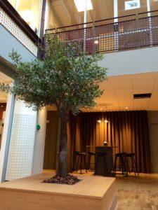 Konstgjorda olivträd på innergård.
