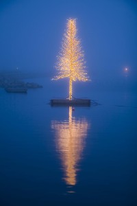 Specialbyggt ljusträd med leds som speglas i vattenytan