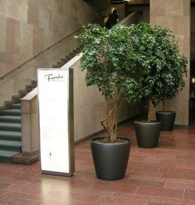 Stora konstväxter med äkta, torkade stammar planterade i Classico krukor.