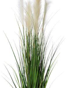 Naturtroget gräs