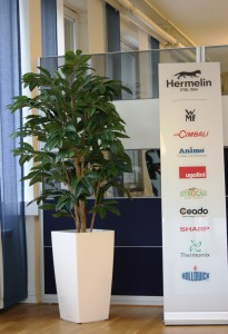 Konstgjord kaffebuske i hög Cubico kruka.