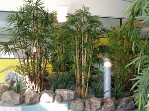 Konstväxter i äventyrsbad.