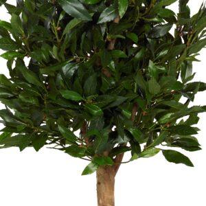 Lagerträd med naturligt utseende