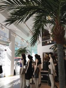Plastpalmer på H&M, Hamngatan Stockholm