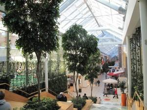 Konstgjorda Lindträd ca 600 cm som står i Solna Centrum. Alla träd är handgjorda och unika.