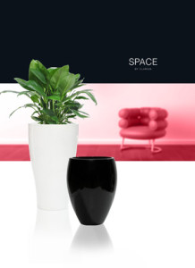 Krukor Space