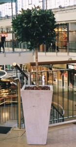Konstgjorda växter i Täby Centrum