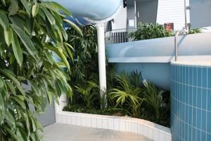 Konstgjorda växter i badhus