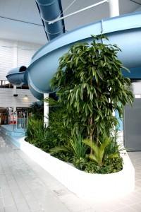 Konstgjorda växter i äventyrsbad.