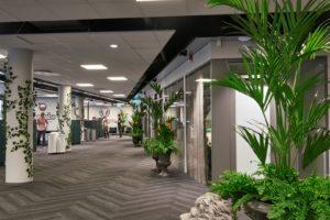 Konstgjorda palmer och murgröna