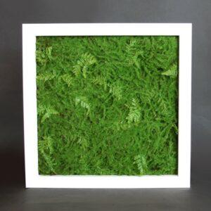 Växtvägg, konstgjord