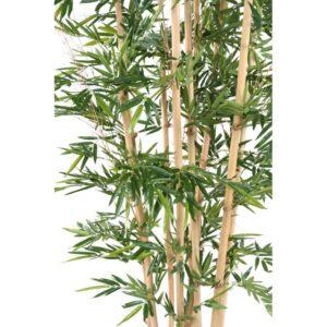 Naturtrogen bambu